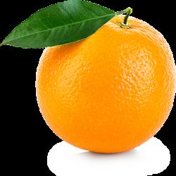 Naranja Ecológica